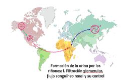Formación de la orina por los riñones: I. Filtración glomerular, flujo sanguíneo renal y su control