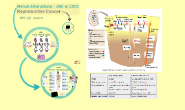 Renal Alterations - AKI & CKD