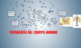 Copy of TOPOGRAFIA DEL CUERPO HUMANO