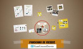 PANORAMA DE RIESGOS