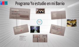 Programa YEEMB 2013