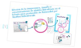 Copy of Fermentación Butanodiolica