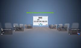 Copy of Organigrama Dirección General de