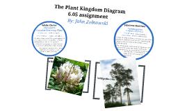 Plants classification 007