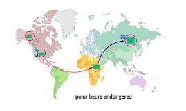 polar bears endangered