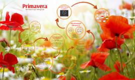Copy of Software Primavera