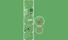 2018. Ficología y Biotecnología (T8)