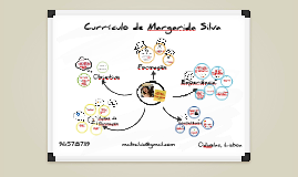 Currículo de Margarida Silva