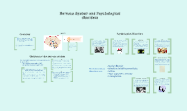 Nervous System and Psychological Disorders