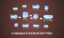Columna Vertebral del Niño