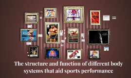 The structure and function of different body systems
