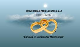 Copy of Copy of Taller de Sanidad e Intimidad Matrimonial