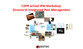 CDPR School IPM Workshop: Structural IPM