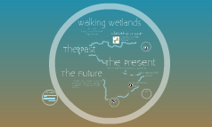 Walking Wetlands
