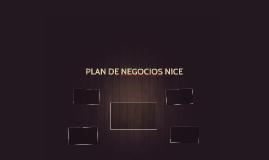 PLAN DE NEGOCIOS NICE