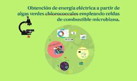 Copy of Obtención de energía eléctrica a partir de algas verdes chlo