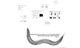 Homologous ifd-2 and col-123 C. elegans Genes Mutations Inducing Human Disease