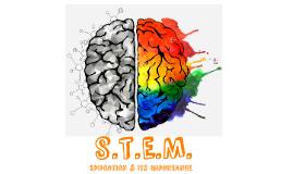 STEM Education & Its Importance