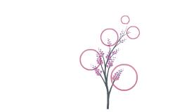 Copy of Fauna e Flora en Xapon