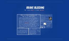 Brake bleeding