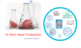 In Vitro Meat Production