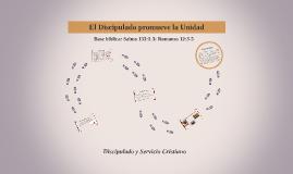 Discipulado y Servicio Cristiano_El disimulado promueve la unidad