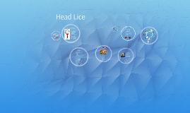 Copy of Head Lice
