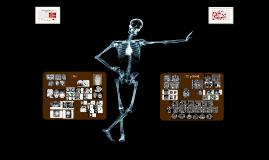Anatomia por Imagenes de Craneo