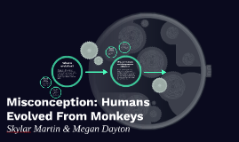 Misconception: Humans Evolved From Monkeys