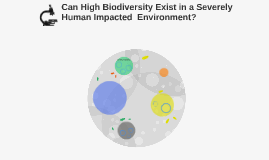 Can High Biodiversity Exist in a Severely Human Impacted Env