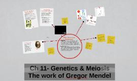 Ch 11- Genetics &Meiosis