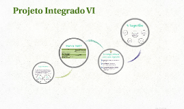 Projeto Integrado VI