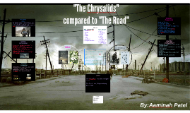 """""""The Chrysalids"""" compared to """"The Road""""."""