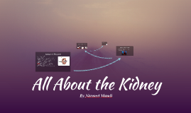 All About the Kidney