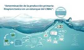 """""""Determinación de la producción primaria fitoplanctonica en"""