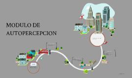 MODULO DE AUTOPERCEPCION