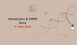 Introduction & LMNA Gene