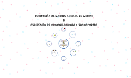 SECRETARIA DE MARINA ARMADA DE MEXICO