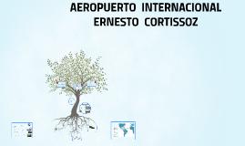 Copy of AEROPUERTO ERNESTO CORTISSOZ