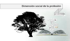 Copy of  2.2 Dimensión social de la profesión