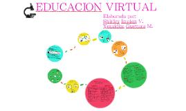 Copy of EDUCACION VIRTUAL