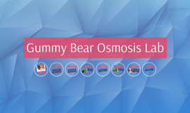 Gummy Bear Lab