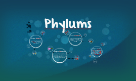 Phylums