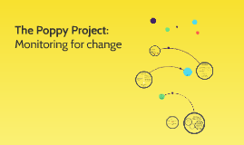 The Poppy Project - M&E Assessment