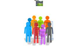 Metas 2015 - Roles