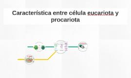 Característica entre célula eucariota y procariota