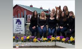 Meet The Elmira College Equestrian Team