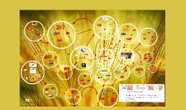 Copy of Formação de Formadores e Educação Superior na cibercultura: