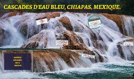 CASCADAS DE AGUA AZUL, CHIAPAS.
