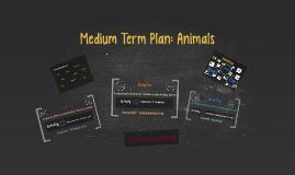 Medium Term Plan: Animals